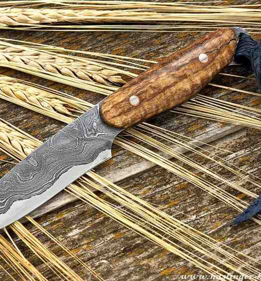 Kernmantel Damascus Bird and Trout Knife