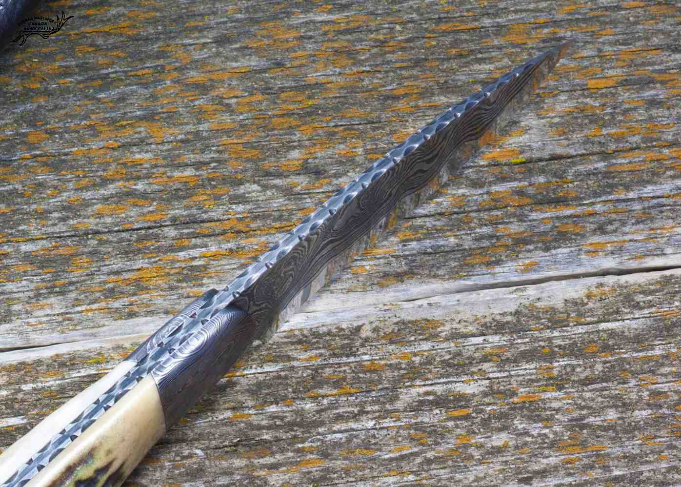 Kernmantle Damascus and Stag Hunter spine view