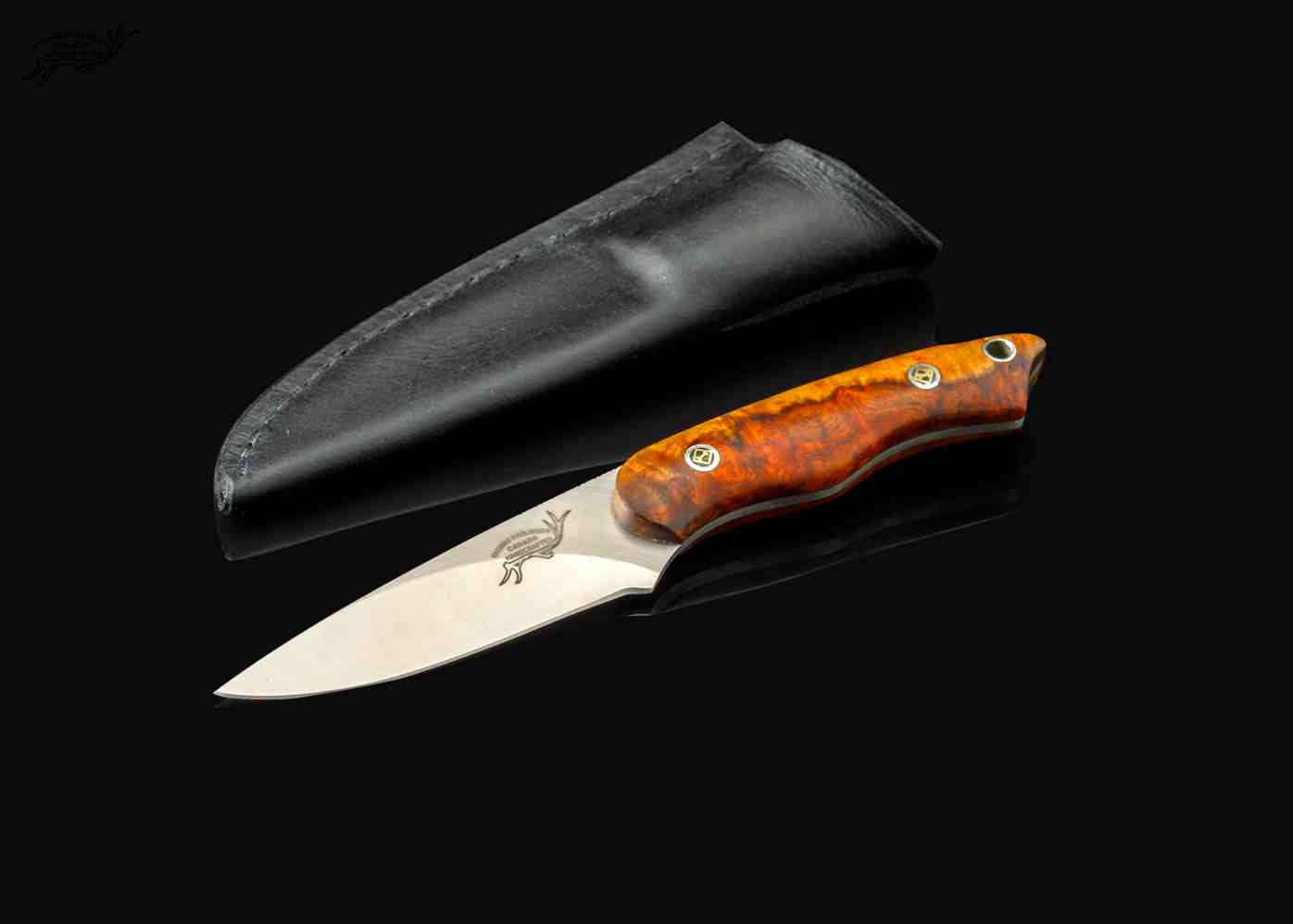 Two toned Thuya Burl Utility Knife